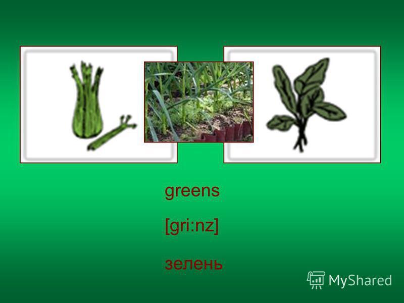 greens [gri:nz] зелень