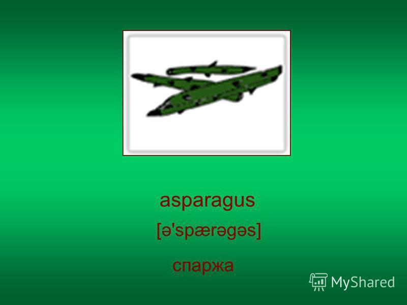 asparagus [ə'spærəgəs] спаржа