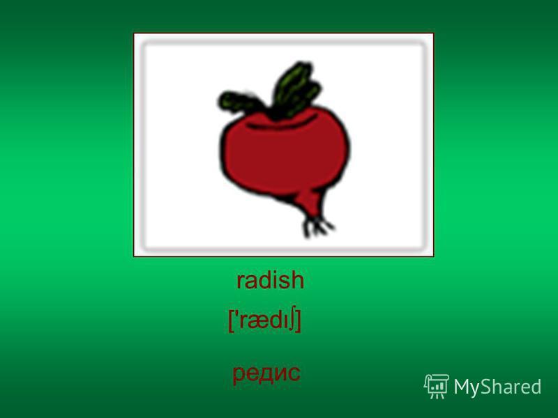 radish редис ['ræd]