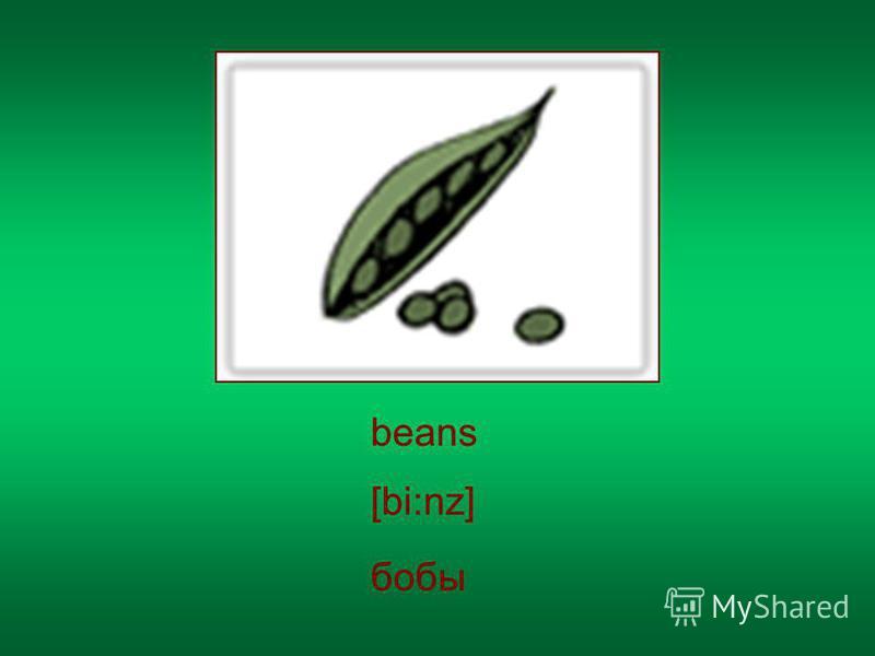 beans [bi:nz] бобы