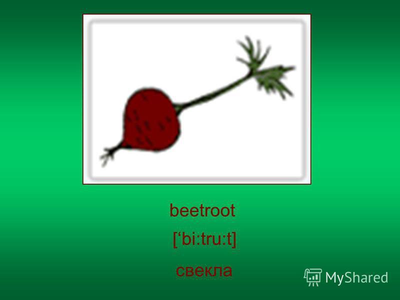 beetroot свекла [bi:tru:t]