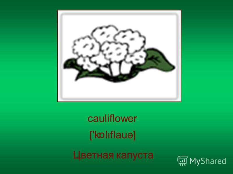 cauliflower Цветная капуста ['k lflauə] α