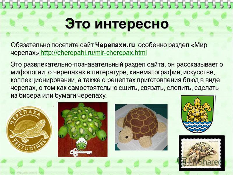 Обязательно посетите сайт Черепахи.ru, особенно раздел «Мир черепах» http://cherepahi.ru/mir-cherepax.htmlhttp://cherepahi.ru/mir-cherepax.html Это развлекательно-познавательный раздел сайта, он рассказывает о мифологии, о черепахах в литературе, кин