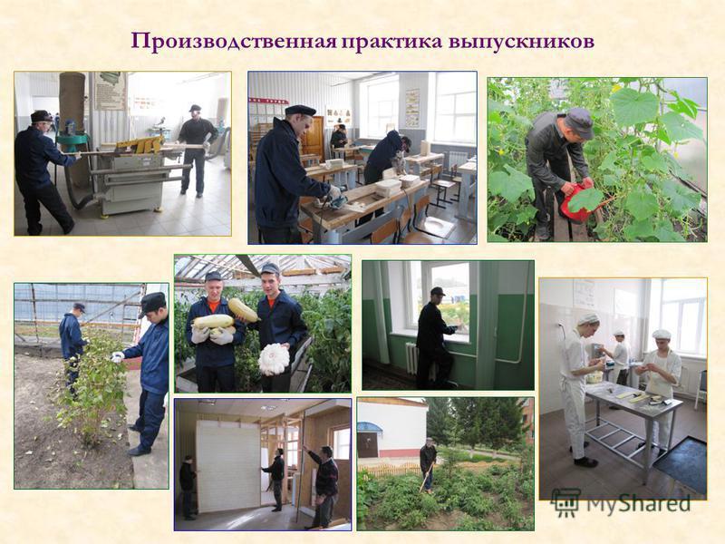 Производственная практика выпускников