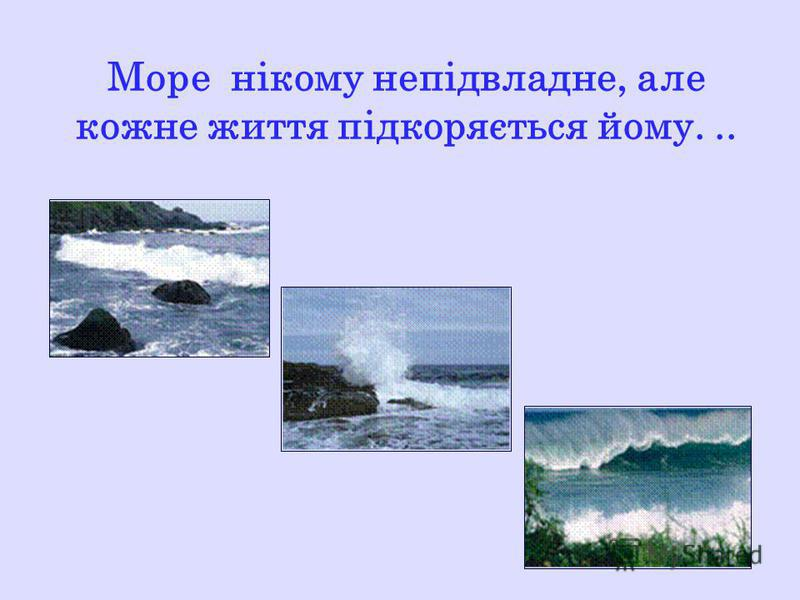 Море нікому непідвладне, але кожне життя підкоряється йому...