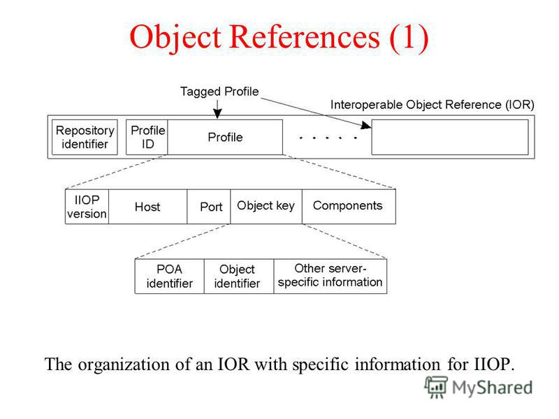 Object References (1) The organization of an IOR with specific information for IIOP.