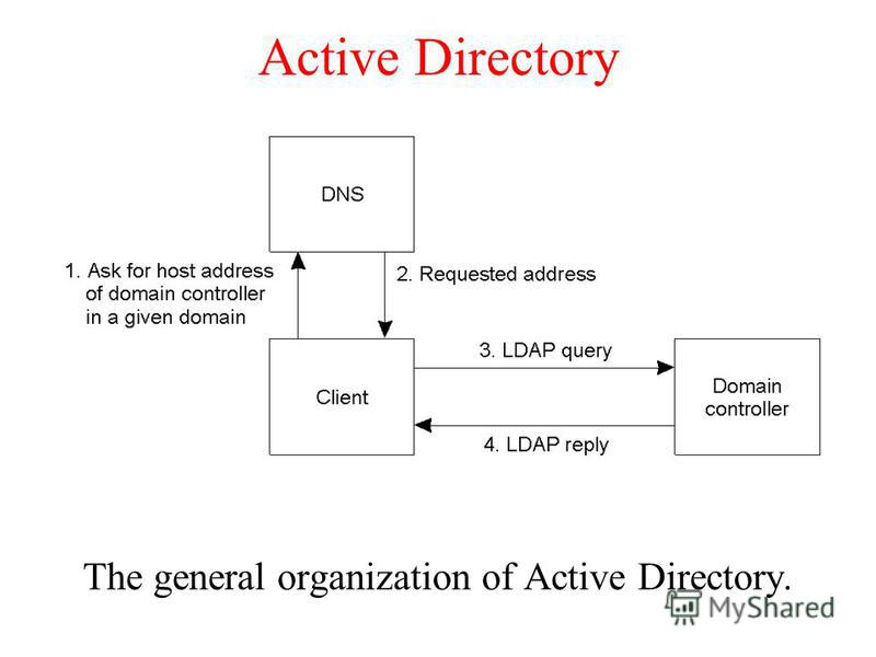 Active Directory The general organization of Active Directory.