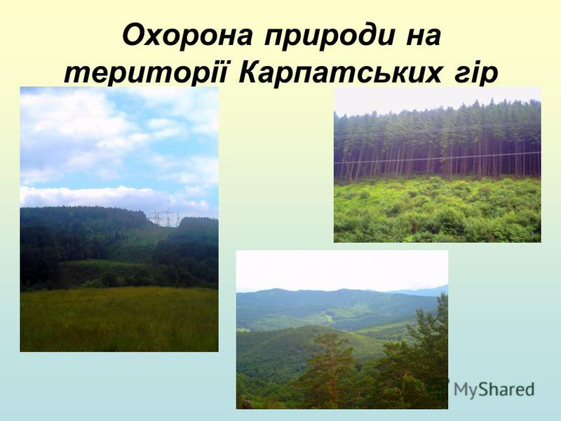 Охорона природи на території Карпатських гір