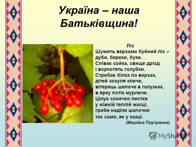 Україна – наша Батьківщина! Ліс Шумить верхами буйний ліс – дуби, берези, буки. Співає сойка, свище дрізд і воркотять голубки. Стрибає білка по верхах, дітей зозуля кличе, вітерець шепоче в галузках, в ярку потік мурличе. Цілує сонечко листки у ніжні