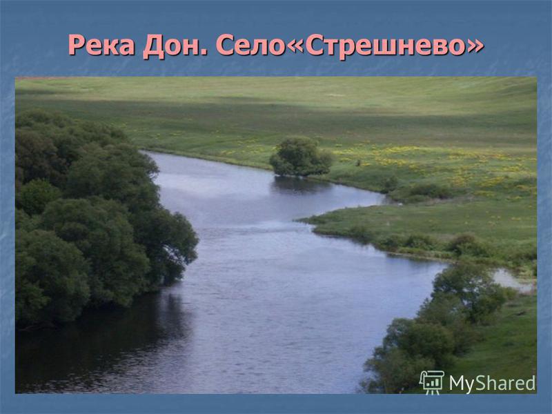 Река Дон. Село«Стрешнево»