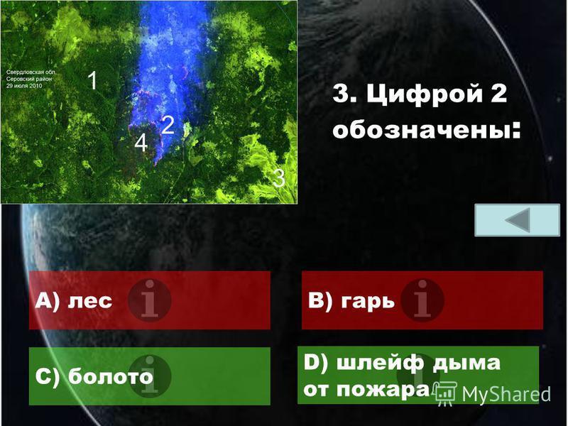 A) поляB) болота C) свежие вырубки D) гари 2. Овалом выделены :