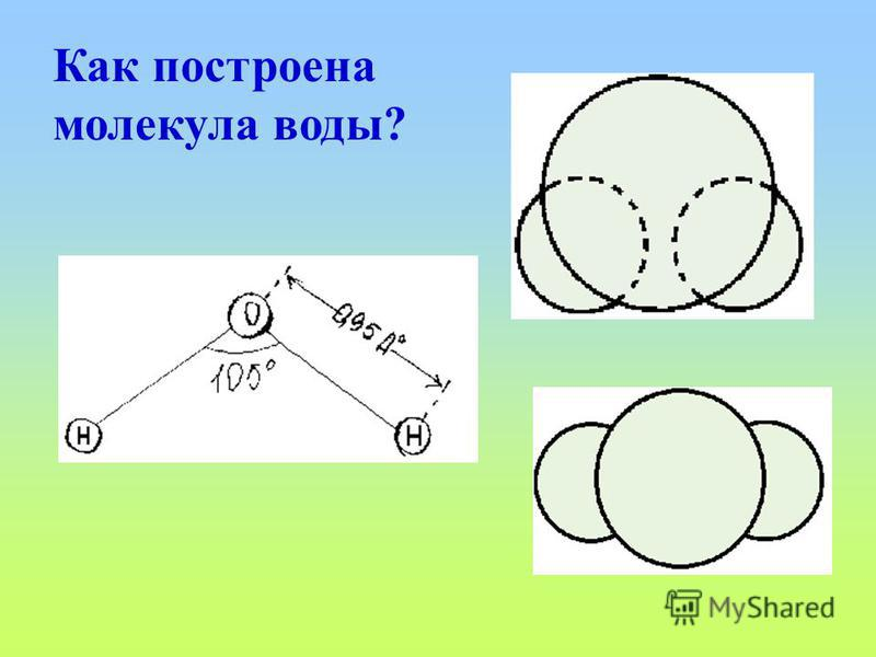 Как построена молекула воды?