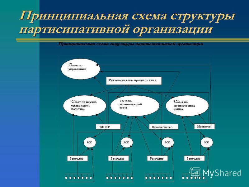 Принципиальная схема структуры партисипативной организации