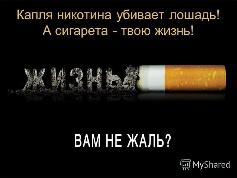 Капля никотина убивает лошадь! А сигарета - твою жизнь!