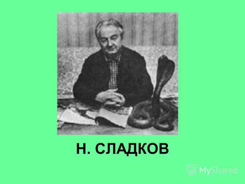 Н. СЛАДКОВ