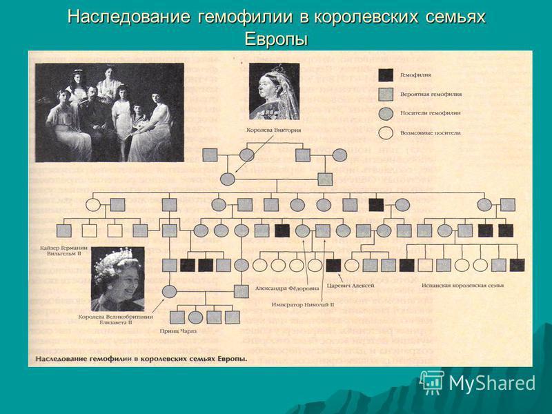 Наследование гемофилии в королевских семьях Европы