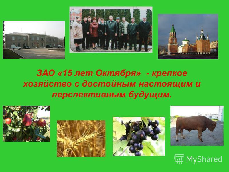 ЗАО «15 лет Октября» - крепкое хозяйство с достойным настоящим и перспективным будущим.