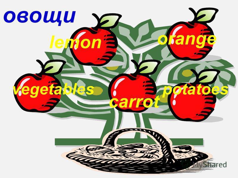 овощи vegetables lemon carrot orange potatoes