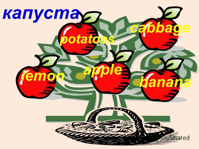 капуста lemon potatoes apple cabbage banana