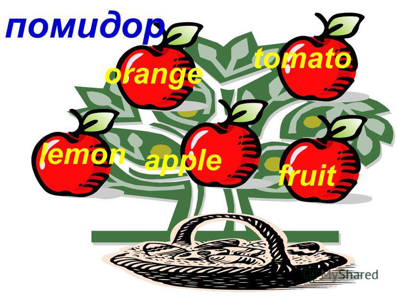 помидор lemon orange apple tomato fruit