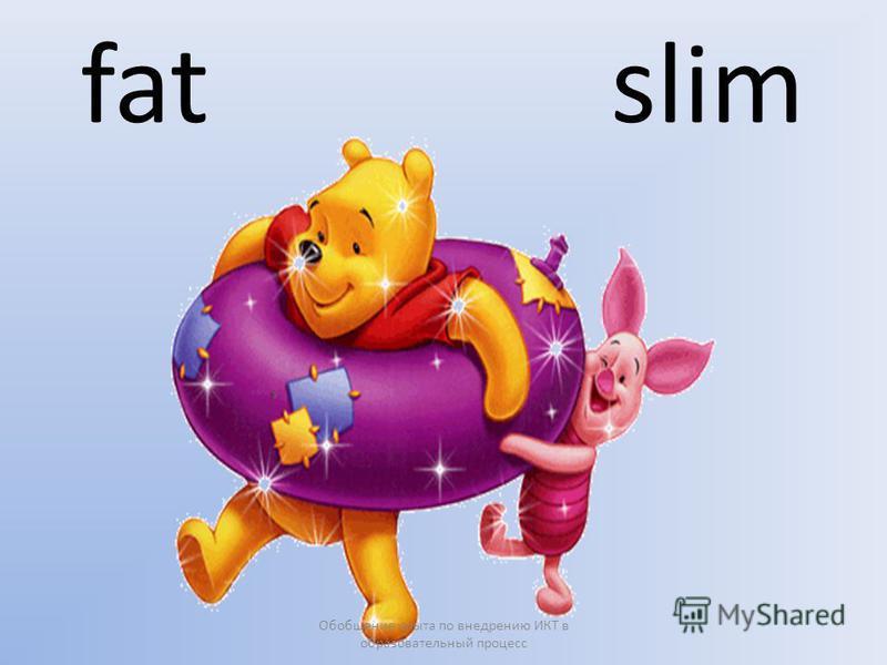 fat slim Обобщение опыта по внедрению ИКТ в образовательный процесс