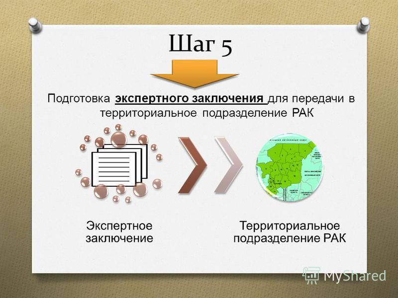 Шаг 5 Подготовка экспертного заключения для передачи в территориальное подразделение РАК