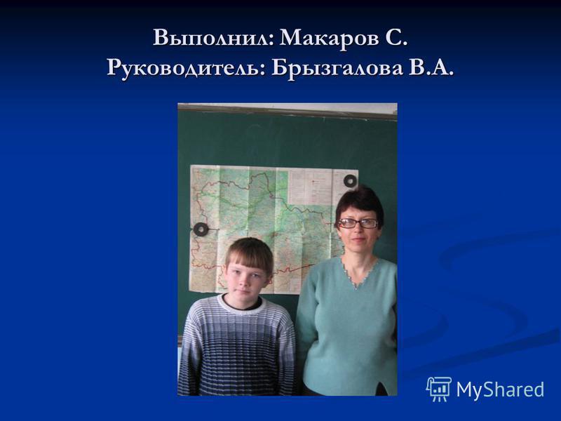 Выполнил: Макаров С. Руководитель: Брызгалова В.А.