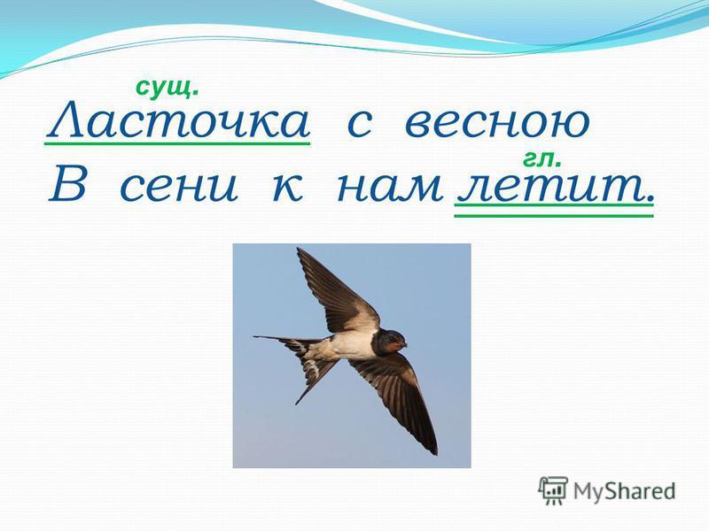 Ласточка с весною В сени к нам летит. сущ. гл.