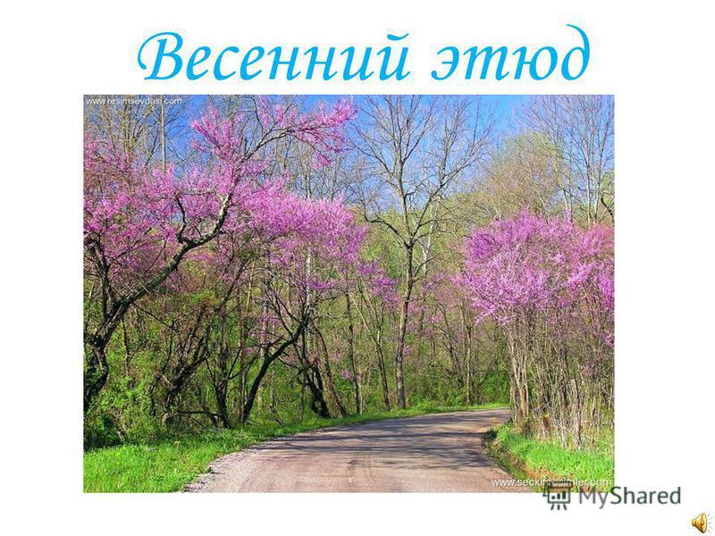 Весенний этюд