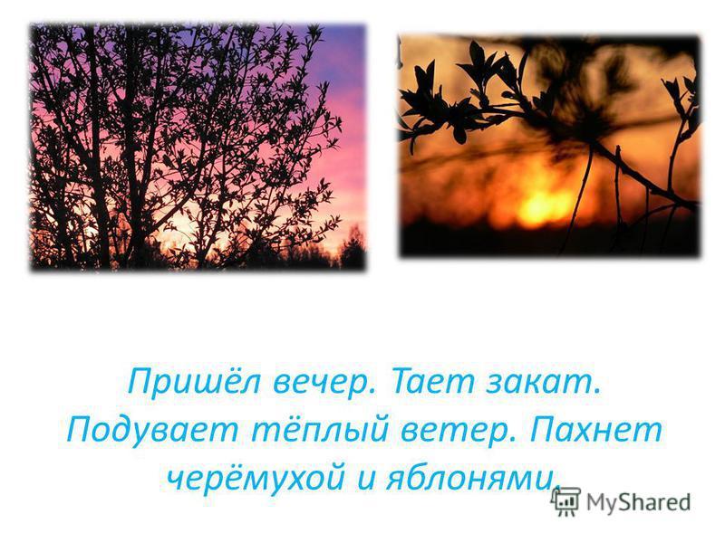 Пришёл вечер. Тает закат. Подувает тёплый ветер. Пахнет черёмухой и яблонями.