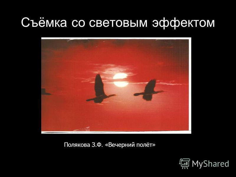 Съёмка со световым эффектом Полякова З.Ф. «Вечерний полёт»