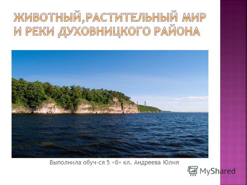 Выполнила обуч-ся 5 «б» кл. Андреева Юлия