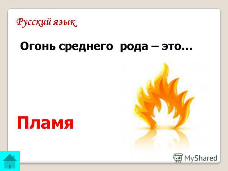 Русский язык ОТВЕТ: Пламя Огонь среднего рода – это…