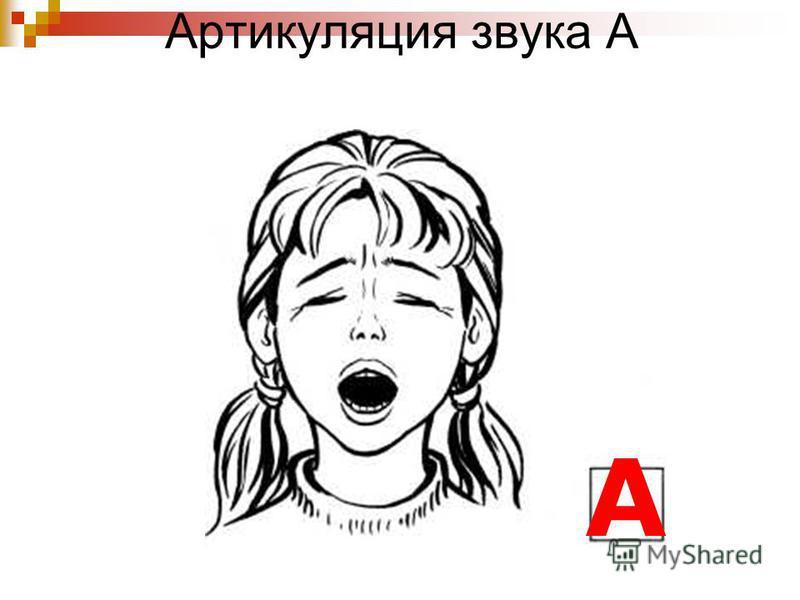 Артикуляция звука А А