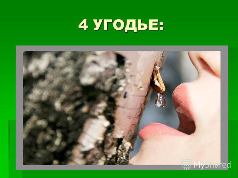 4 УГОДЬЕ: