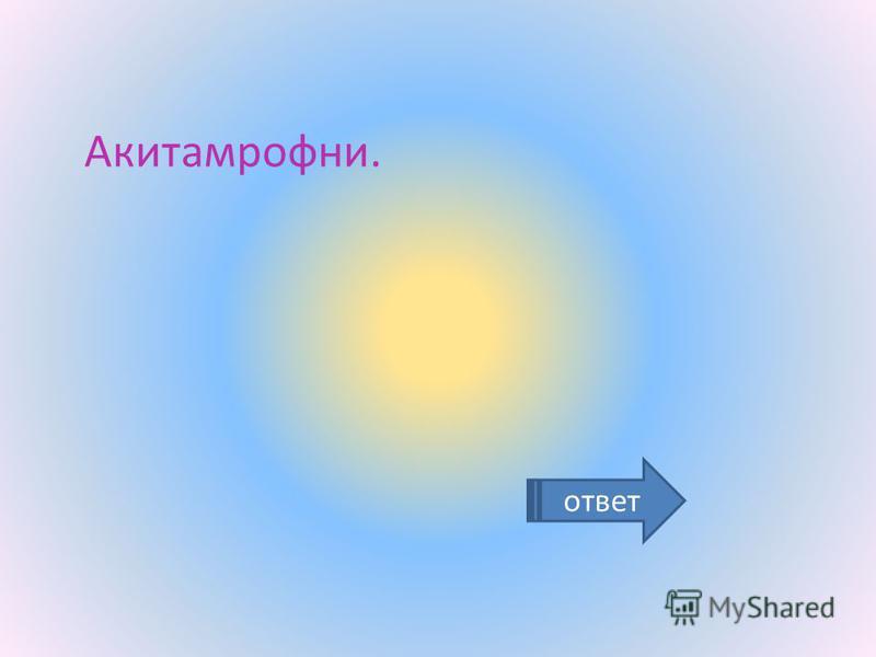 ответ Акитамрофни.