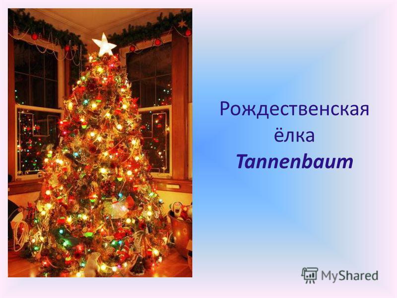 Рождественская ёлка Tannenbaum