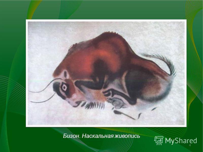 Бизон. Наскальная живопись 4