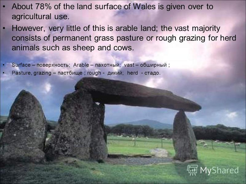 About 78% of the land surface of Wales is given over to agricultural use. However, very little of this is arable land; the vast majority consists of permanent grass pasture or rough grazing for herd animals such as sheep and cows. Surface – поверхнос