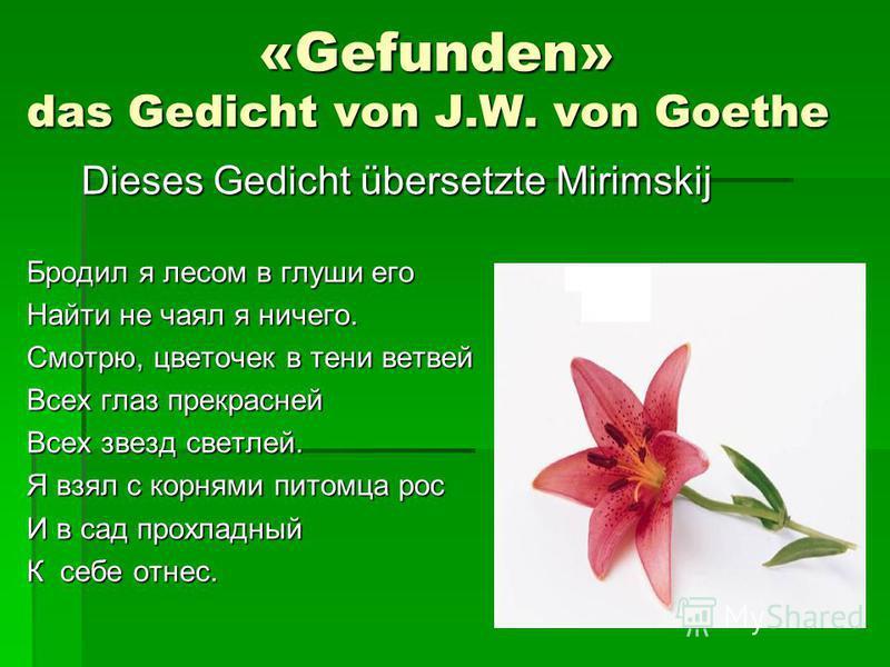 «Gefunden» das Gedicht von J.W. von Goethe «Gefunden» das Gedicht von J.W. von Goethe Dieses Gedicht übersetzte Mirimskij Dieses Gedicht übersetzte Mirimskij Бродил я лесом в глуши его Найти не чаял я ничего. Смотрю, цветочек в тени ветвей Всех глаз