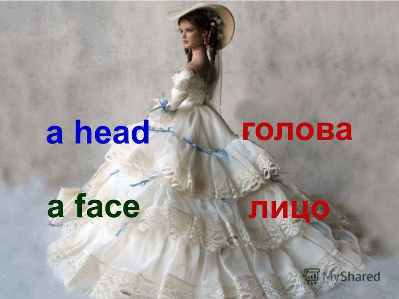 a head голова a face лицо