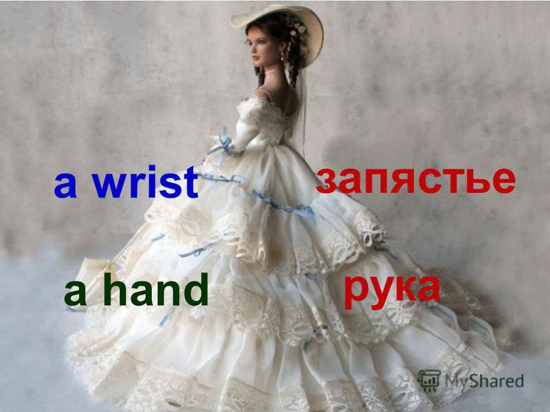 a wrist запястье a hand рука