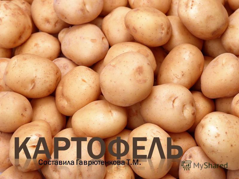 Составила Гаврютенкова Т.М.