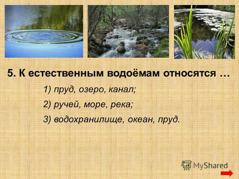 5. К естественным водоёмам относятся … 1) пруд, озеро, канал; 2) ручей, море, река; 3) водохранилище, океан, пруд.