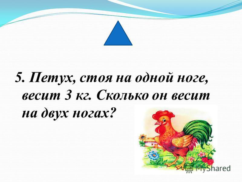 4. Можно ли при делении чисел получить нуль?