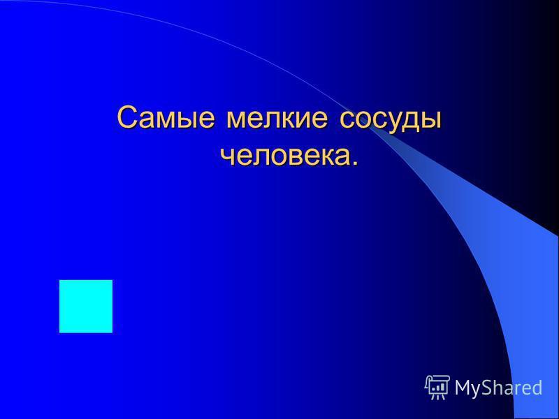 Какая крупнейшая река Евразии берёт начало в Иркутской области.
