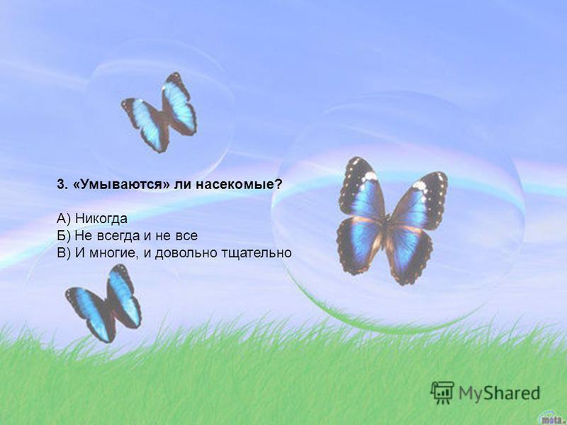 3. «Умываются» ли насекомые? А) Никогда Б) Не всегда и не все В) И многие, и довольно тщательно