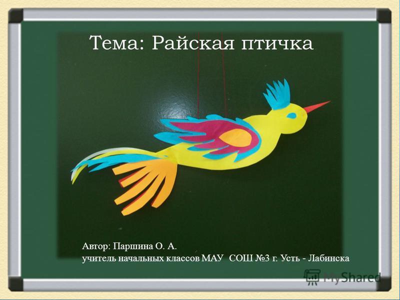 Автор: Паршина О. А. учитель начальных классов МАУ СОШ 3 г. Усть - Лабинска Тема: Райская птичка