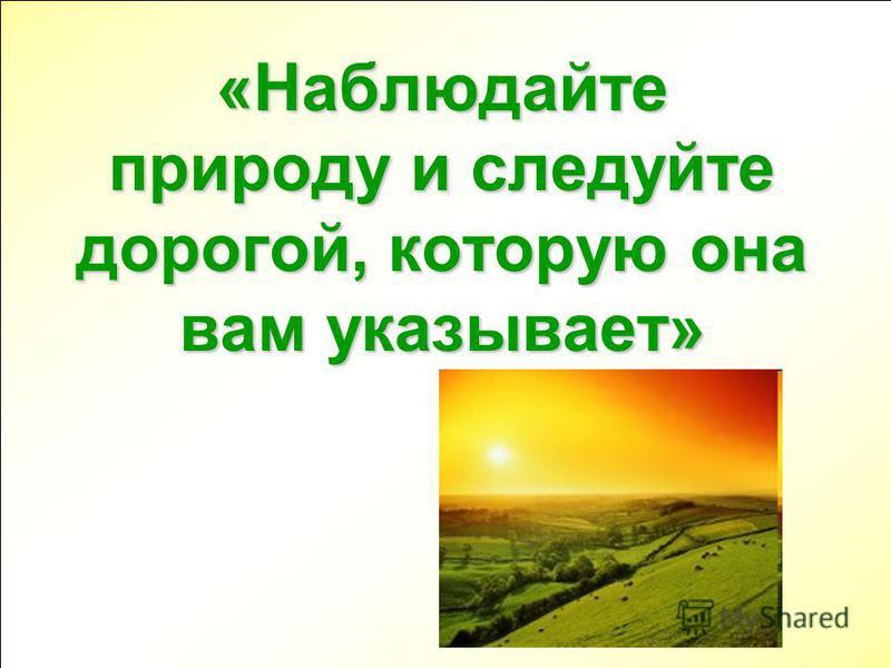 «Наблюдайте природу и следуйте дорогой, которую она вам указывает»
