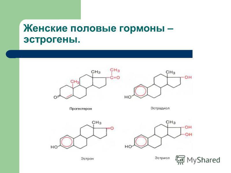 Женские половые гормоны – эстрогены.
